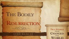 The Bodily Resurrection